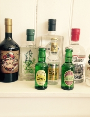 gins(1)